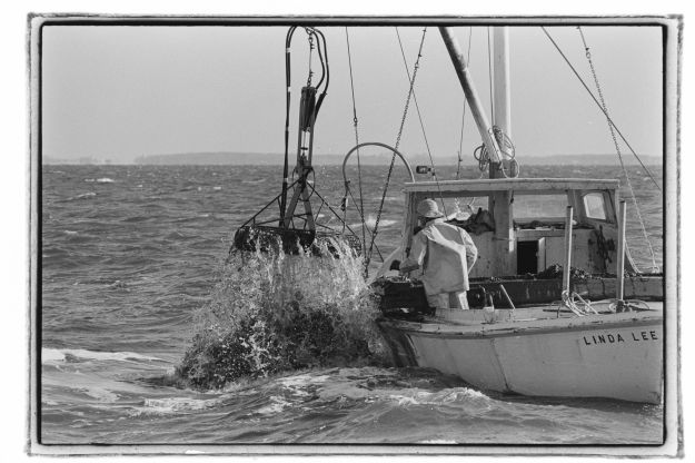 Robert de Gast Chesapeake Bay photos